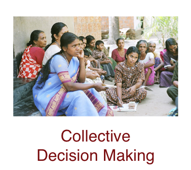 collective-decision-making