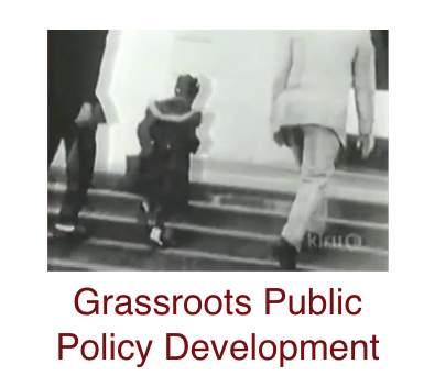 grassroots-public-policy-development